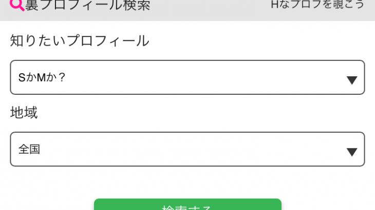 PCMAXの「裏プロフィール検索」で女王様も、M女も探し放題!!